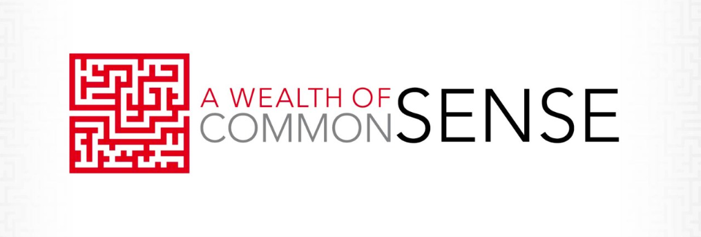 A WEALTH OF COMMON SENSE PDF